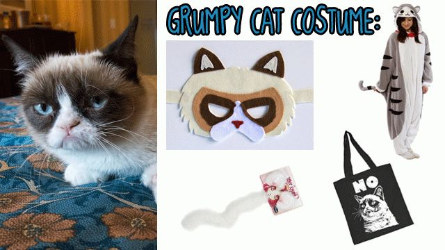 How to dress up like Grumpy Cat (Because, why not?)