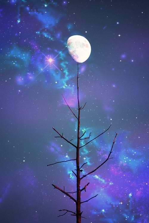 Moon in the blue and purple sky