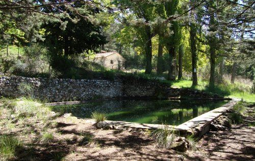 Fuente del Buitre