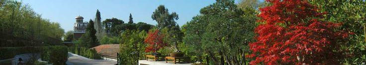 Real Jardín Botanico de Madrid