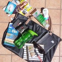 What's in my travel bag?  All the essentials + a free printable checklist!  All on https://samanthacarraro.wordpress.com/2016/06/16/my-travel-bag/