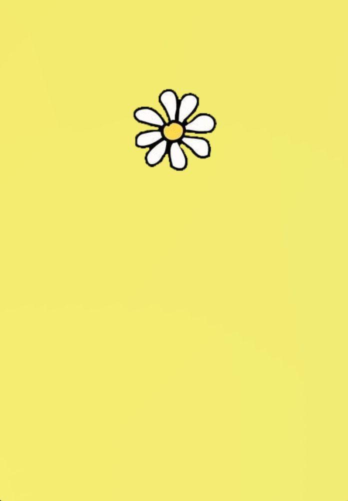 Yellow Daisy Wallpaper Pink Flowers Wallpaper Yellow Flower Wallpaper Daisy Wallpaper
