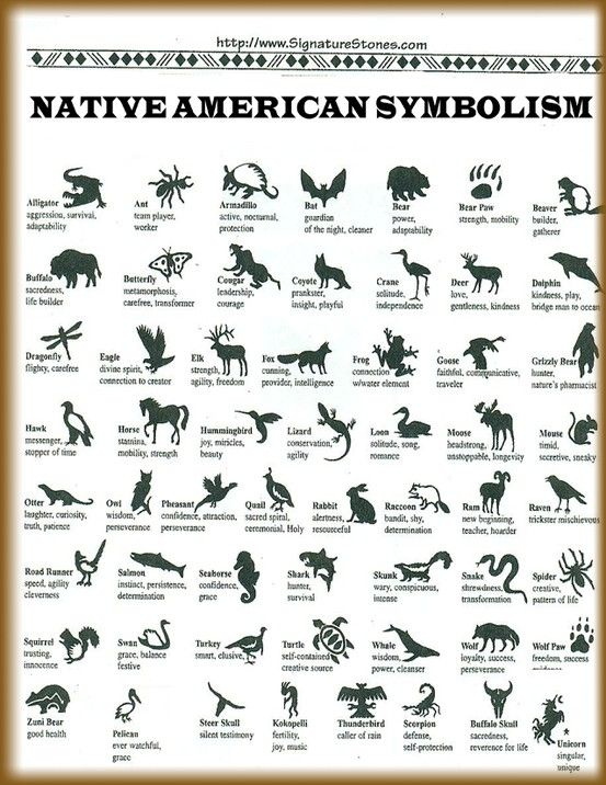 Image detail for -Native American Animal Symbols and Their Meanings | Native American ...