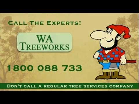 WA Tree works Pty Ltd - Tree Removal, Pruning, Powerline Clearances Experts