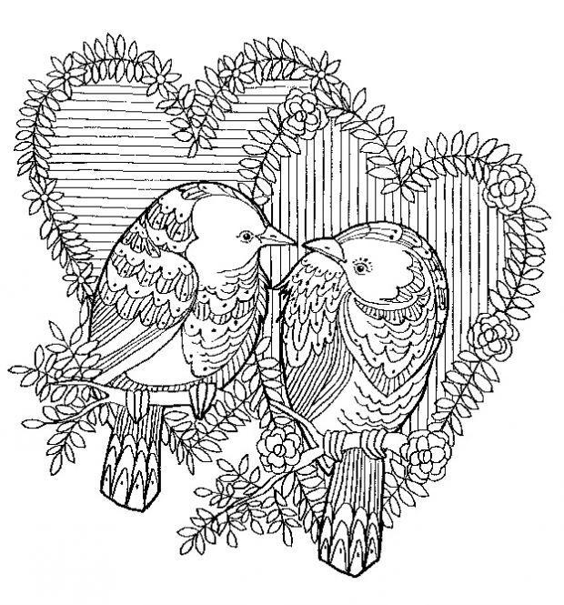 8208 ausmalbuch vorlage vogel paerchen 620 - Vorlage vogel ...