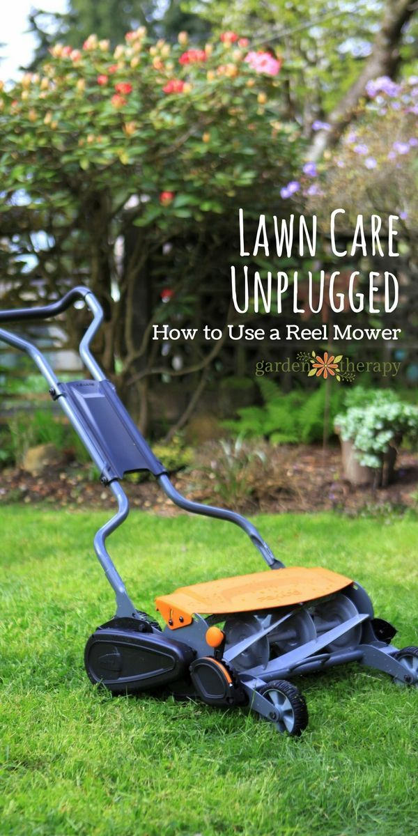 Reel Mower 101: @garden_therapy  has all of the tips for your lawn, whether it's knowing the ideal height for your grass or sharpening tools. Let the fun exercise begin.