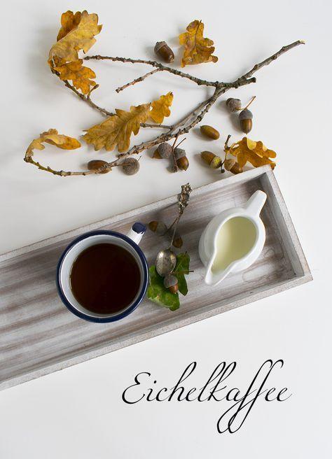 #eichel #bäume #natur #naturrezepte #eichelkaffee #eiche #wald #kräuter #kochenmitkräuter