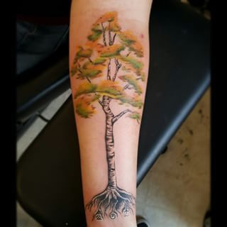 1000 ideas about birch tree tattoos on pinterest tree for Birch tree tattoo meaning