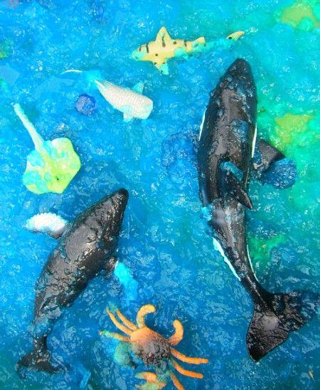 Water met voedselkleuring en gelatine. Plastic waterbeesten. Thema: jona, Noach, schepping, ?