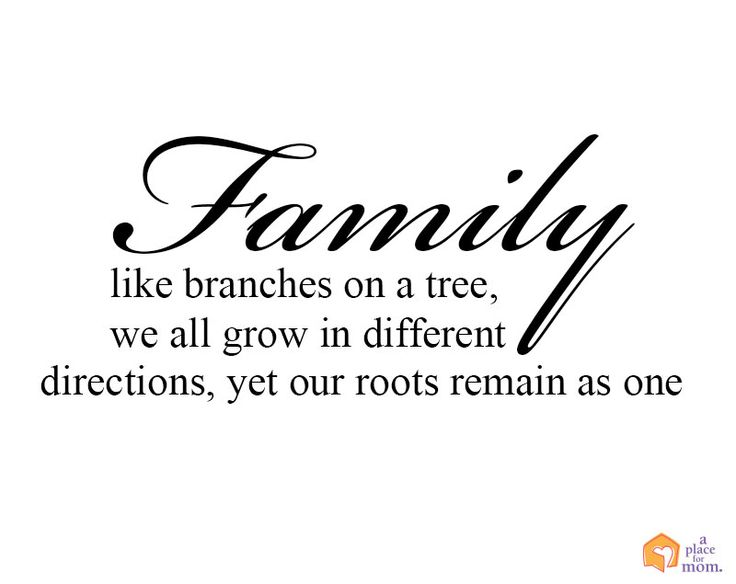 Family Like Branches In A Tree We All Grow In Different
