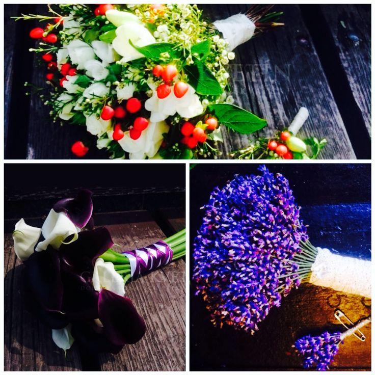 Kvetinova skola galerie kvetin