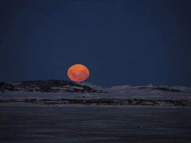 De bever maan verwijst naar de activiteiten die bevers nu ontwikkelen om zich veilig te stellen voor de winter. Ze zorgen voor de voedselvoorziening