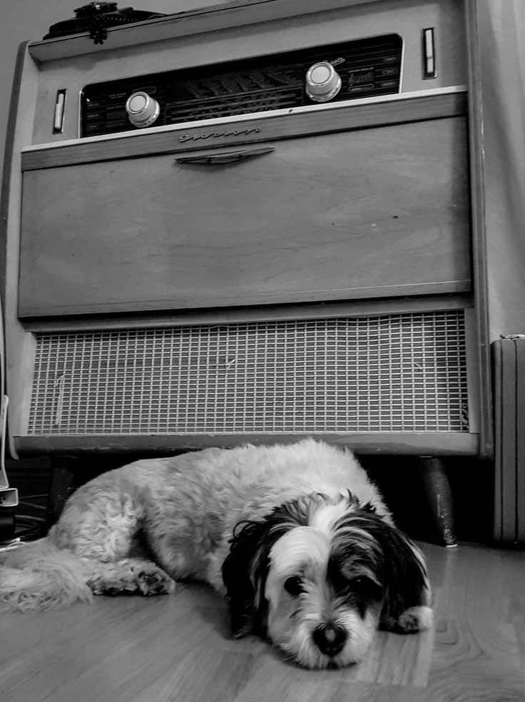 Old fashion girl need a old fashion stereo system. Or mono system.