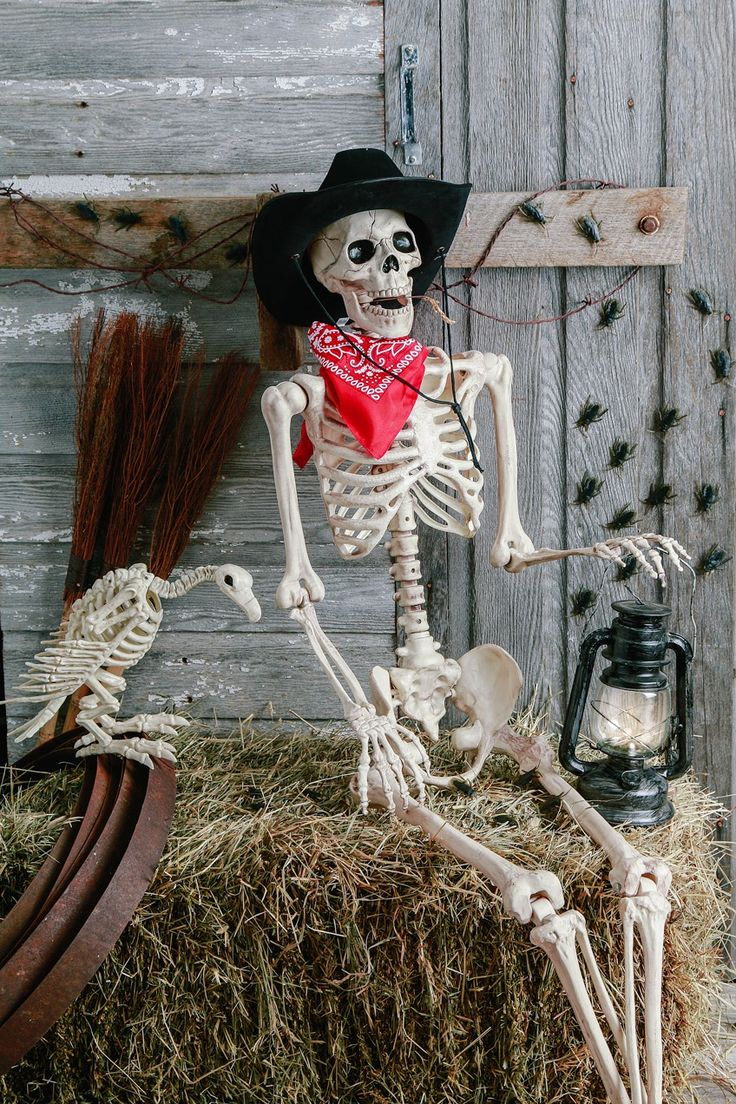 best 25 halloween skeleton decorations ideas on pinterest