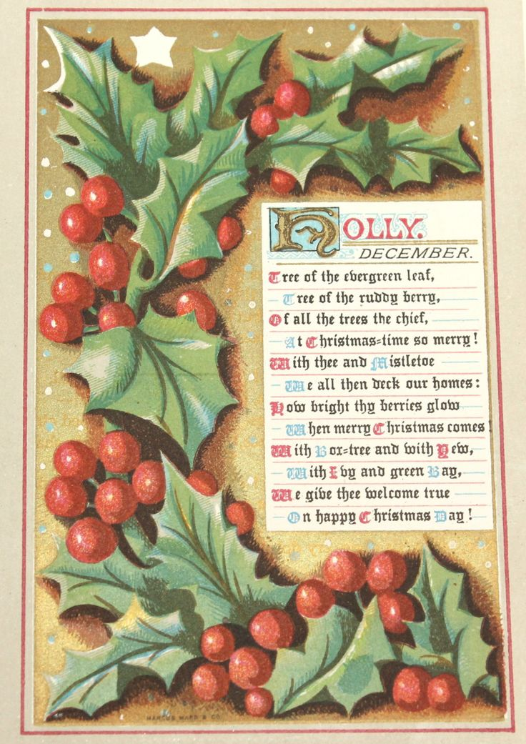 1873 Genuine Antique HOLLY December Plate - Vintage Original Victorian Print Seasons Months Wild Flowers Botanical Botany by VintagePrintageArt on Etsy Birthday month, flowers, mounted print, bulbs, wild flowers, British native flowers, book plate, Winter, Autumn, holly berries, red berries, holly berry, red berry, Christmas