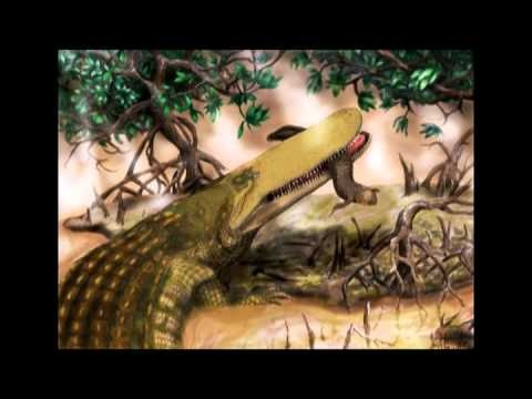 Huge crocodile existed in prehistoric times.