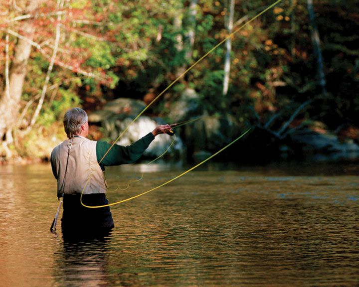 Fly fishing for trout near the dillard house in dillard for Trout fishing in ga