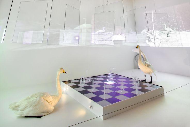 "Osmo Rauhala´s installation ""Game of life"". Photo: Jari Kostet"