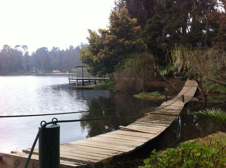 Muchas veces buscamos un tiempo y espacio para pensar o compartir. Desde Laguna Sausalito, Viña del Mar, Chile. Ver más en http://www.demirar.cl/2013/08/laguna-sausalito-vina-del-mar/