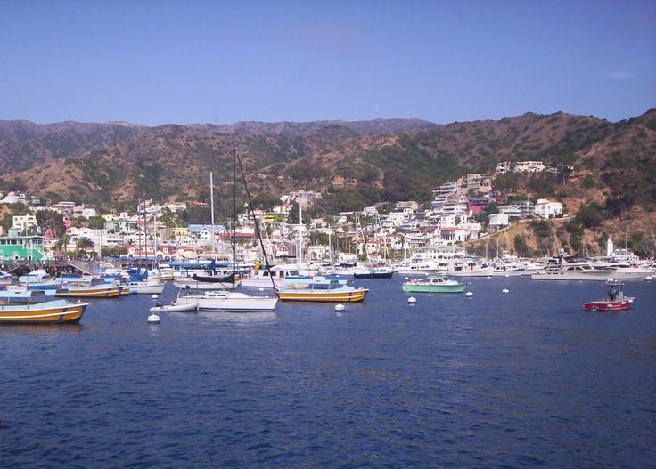 Catalina Island, Avalon, California, USA