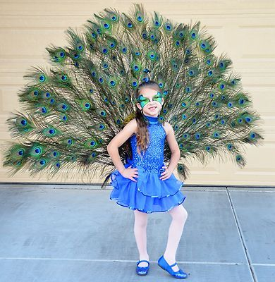 peacock halloween costume child small handmade 5 6 ebay - Small Halloween Costumes
