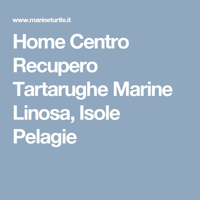 Home Centro Recupero Tartarughe Marine Linosa, Isole Pelagie