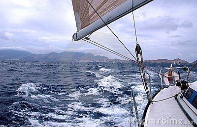 Regatta in the Madeira Island