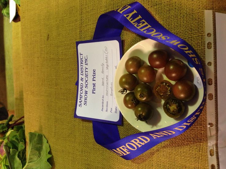 Samford Valley 2014 Show - First prize Tomatoes
