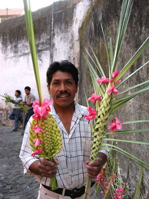Palm Sunday- learn about the TRADITIONS and HISTORY of this holiday as it is celebrated in Mexico at http://www.amazon.com/Celebraciones-Mexicanas-Traditions-AltaMira-Gastronomy/dp/0759122814