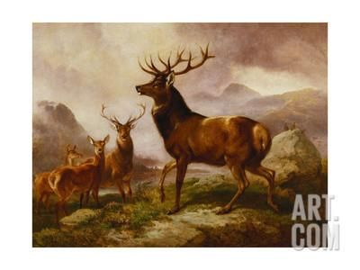 A Proud Stag Giclee Print by Samuel John Carter at Art.com
