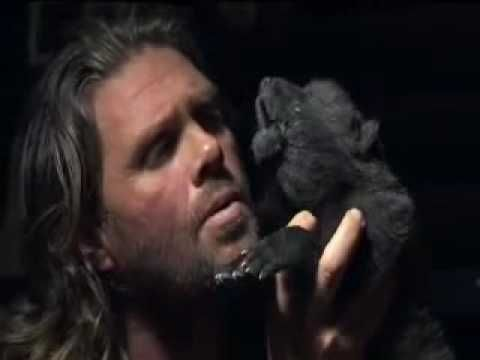 Ridiculously adorable: Wolfman teaching a wolf pup how to howl.