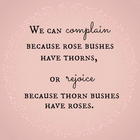 We can complain because rose bushes have thorns, or rejoice because thorn bushes have roses