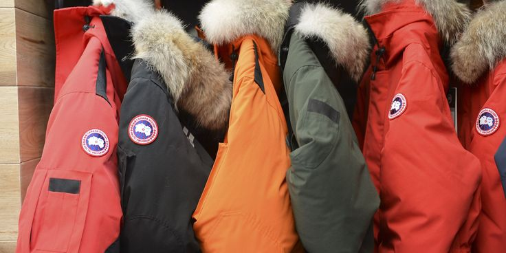 One YouTuber doesn't think so.- Canada Goose, Leather, Fur: Should These Products be Allowed Into Vegan/Vegetarian Restaurants | HerCampus