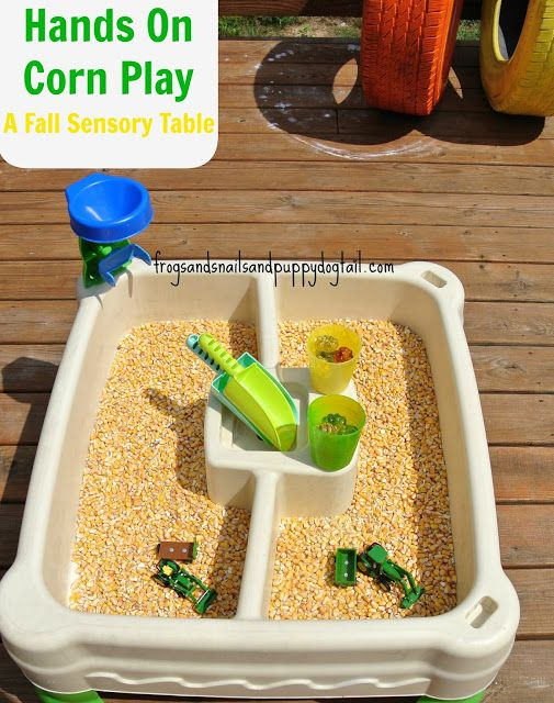 Corn Sensory Play- Fall Sensory Table for hands on play by FSPDT
