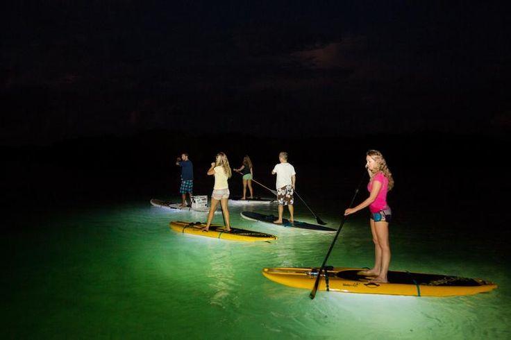Led illuminated night kayaking or paddle boarding tour for Kayak lights for night fishing