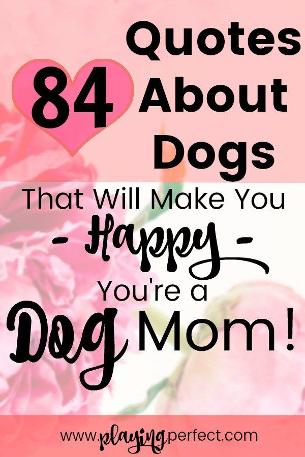 If you're a dog mom, or a dog dad, get ready to be excited! Here are 84 quotes about dogs that will make any dog parent smile all day long! Dogs are the best and these dog quotes are going to make you happy, not sad, and give you tons of ideas for adding dog quotes to your decor, your phone, and/or your next dog printable! FREE printable! | playingperfect.com