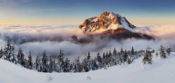 Fairly  tale winter story. Imagine being there now....  #winter #slovakia #malafatra #mountains  Rozsutec peak by Tomas Sereda on 500px