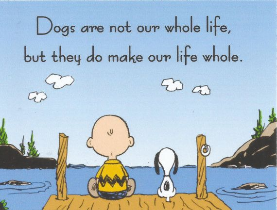1000+ Charlie Brown Quotes On Pinterest