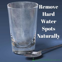 DIY: Remove Hard Water Spots from Glass Naturally