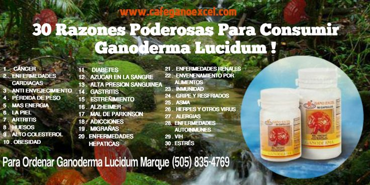 30 razones poderosas para consumir Ganoderma Lucidum de Gano Excel, ayada para cancer, diabetes, perdida de peso, artritis, enfermedades del corazon, alta presion, colesterol alto, obesidad, te da mas energia y muchos otros beneficion