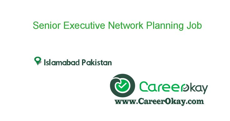 Senior Executive Network Planning
