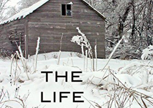 The Life We Bury – Amazon Best Sellers