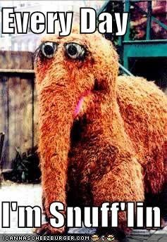Makes me laugh, laugh, laugh the-archives: Laughing, Sesame Street, Snuff Lin, 90S Kids, Childhood Memories, Big Birds, Funny Stuff, Things, Snufflin