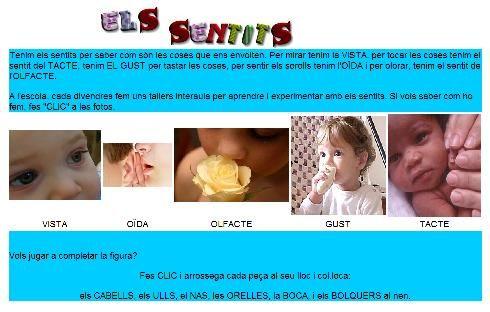 Projecte Els sentits (activitats i recursos)