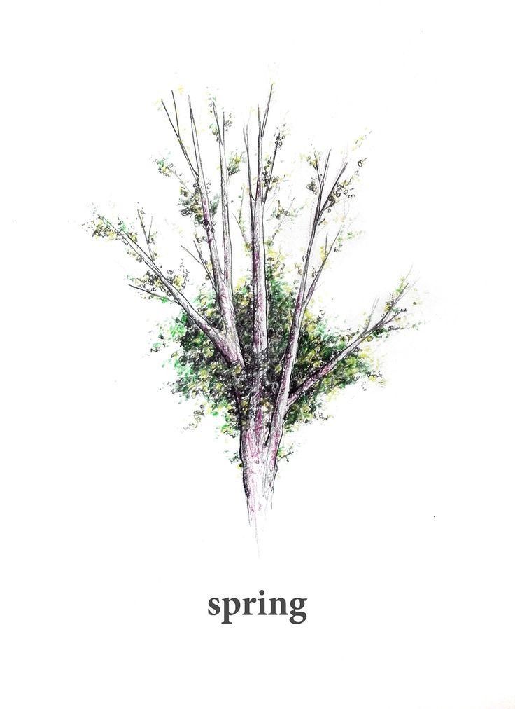 Relación abstracto por lo concreto. En este caso, el árbol en flor es un símbolo concreto de la primavera, que es un concepto abstracto, la cual queda simbolizada por el objeto.