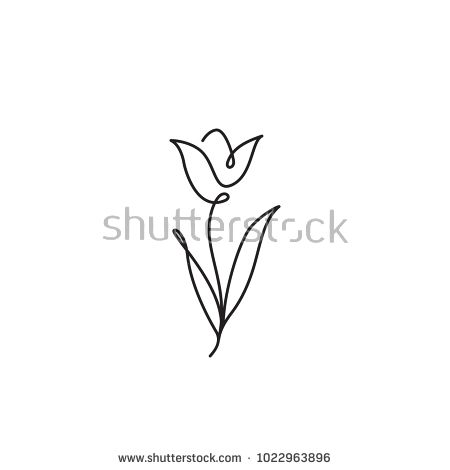 Tulip flower line art. Minimalist contour drawing. One line artwork – koop deze … – Eva De Sutter