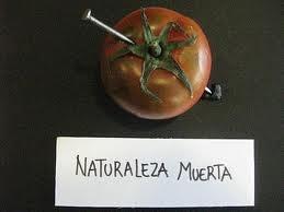 nicanor parra antipoemas
