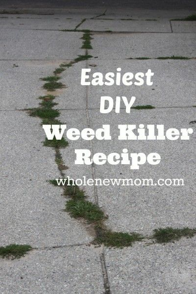 Natural Weed Killer - Super simple and No Toxins!!!   Whole New Mom   #prepbloggers #weeds