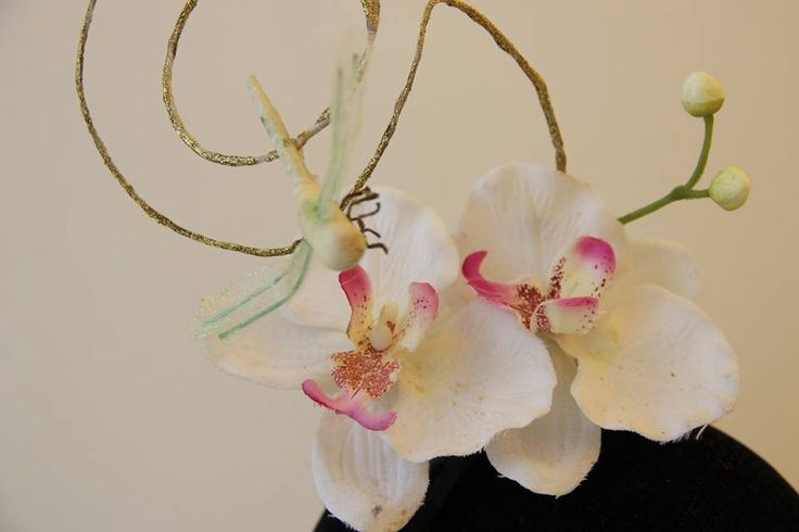 Orchidea e libellula