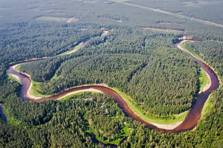 Meandering rivers and lush forests!